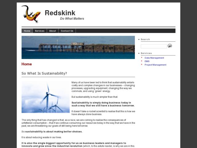 screenshot of Redskink - Do What Matters