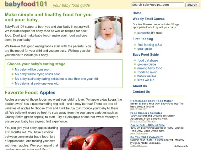 screenshot of Baby Food 101