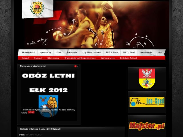 screenshot of Zubry.pl