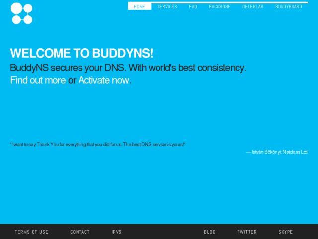 screenshot of BuddyNS