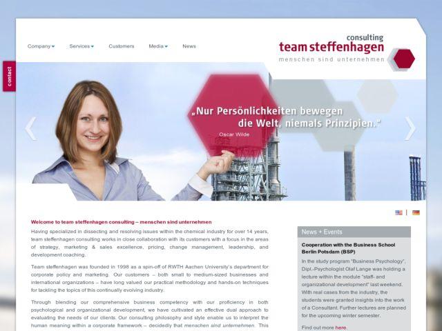 screenshot of team steffenhagen consulting GmbH