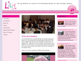 The Lily Foundation