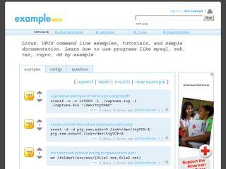 examplenow.com