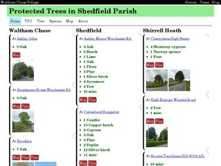 Protected Trees in Shedfield Parish
