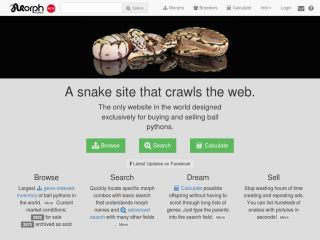 MorphMarket: Find Your Next Ball Python. Easily.